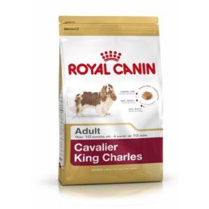 7ff633d1e657ce CAVALIER KING CHARLES 1.5 KG