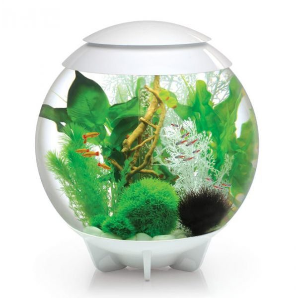 aquarium-biorb-halo-60-l-blanc-led-moonlight